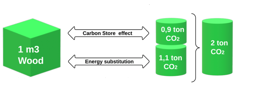 Carbon store effect